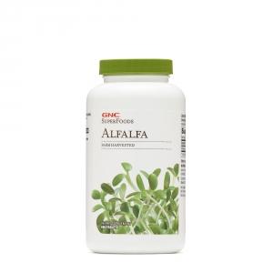 Alfalfa - Lucerna 500 mg (480 capsule), GNC