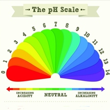 pH-ul corpului si cum poate influenta sanatatea noastra