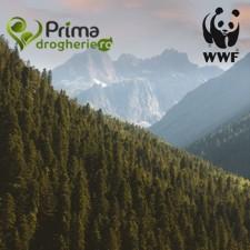 Proiectul WWF Împreună salvăm pădurile României