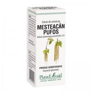 Extract din amenti de mesteacan pufos - Betula Pubescens MG=D1 (50 ml), Plantextrakt