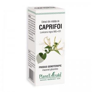 Extract din mladite de caprifoi negru - Lonicera Nigra MG=D1 (50 ml), Plantextrakt