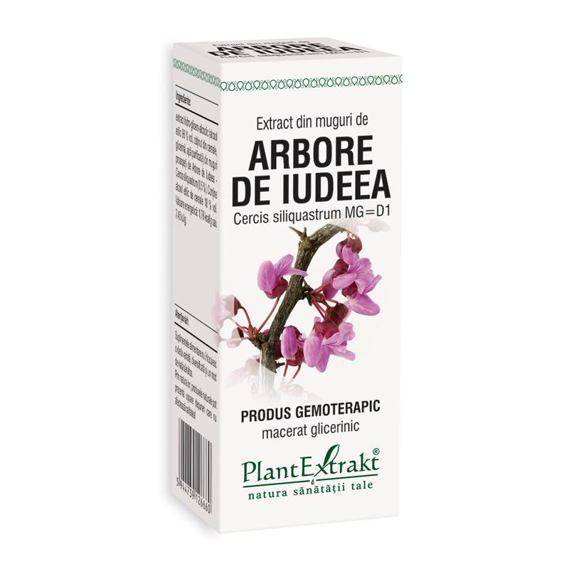 Extract din muguri arbore de iudeea - Cercis Siliq MG=D1(50 ml), Plantextrakt