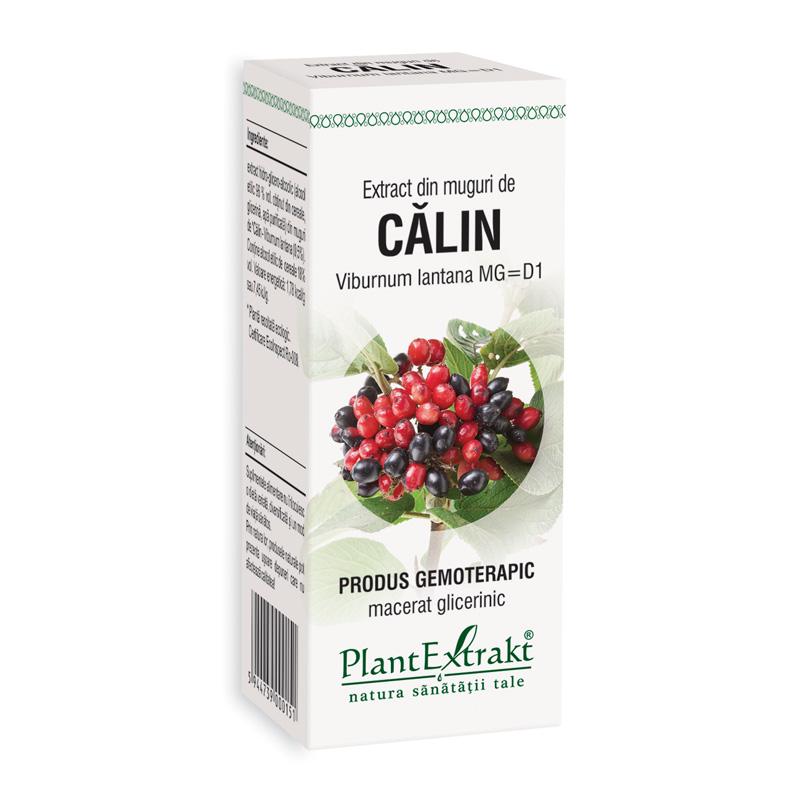Extract din muguri de calin - Viburnum Lantana MG=D1 (50 ml), Plantextrakt