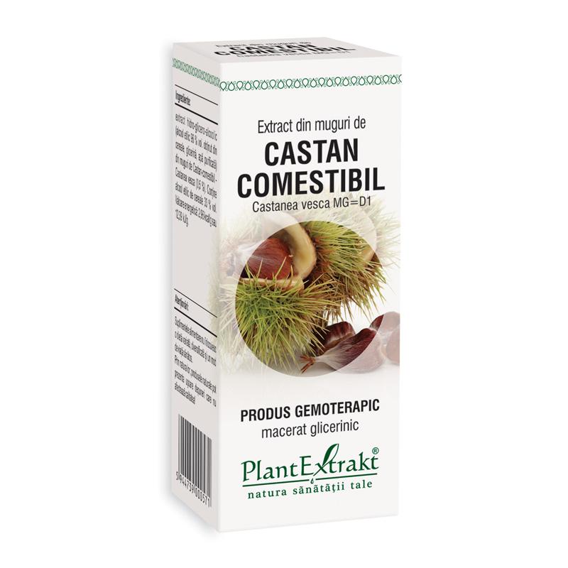 Extract din muguri de castan comestibil - Castanea Vesca MG=D1 (50 ml), Plantextrakt