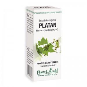 Extract din muguri de platan - Platanus Orientalis MG=D1 (50 ml), Plantextrakt