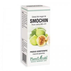 Extract din muguri de smochin - Ficus Carica (50 ml), Plantextrakt