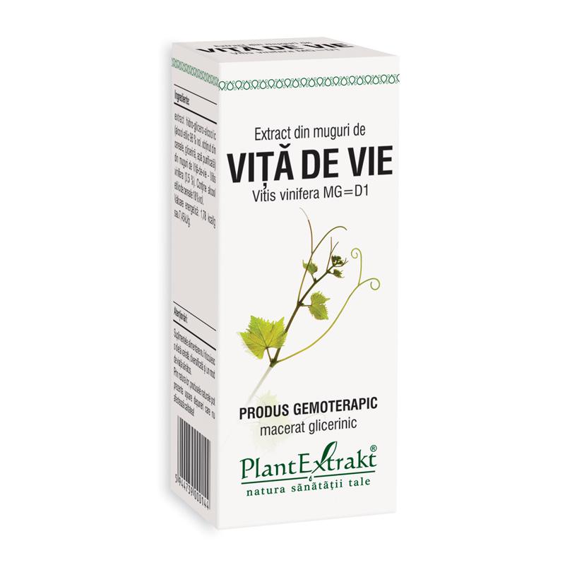 Extract din muguri de vita de vie - Vitis Vinifera (50 ml), Plantextrakt