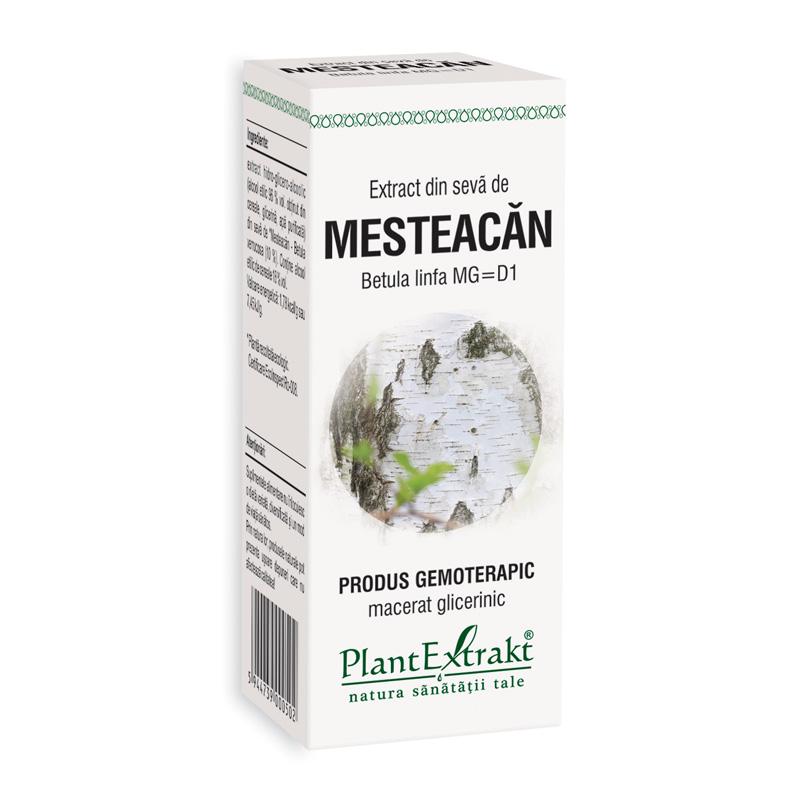 Extract din seva de mesteacan - Betula Linfa MG=D1 (50 ml), Plantextrakt