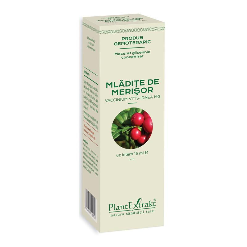 Macerat glicerinic concentrat din mladite de merisor (15ml), Plantextrakt