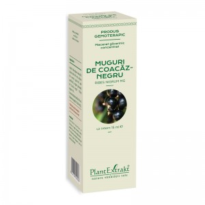 Macerat glicerinic concentrat din muguri de coacaz negru - Ribes Nigrum (15ml), Plantextrakt