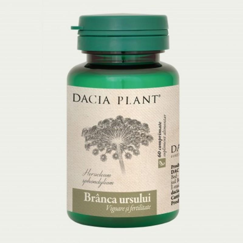 Branca ursului (60 comprimate), Dacia Plant