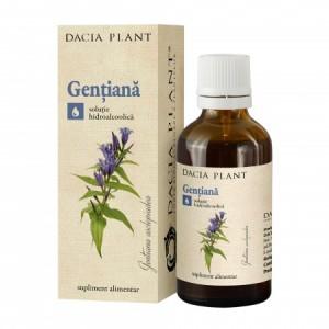 Gentiana tinctura (50 ml), Dacia Plant