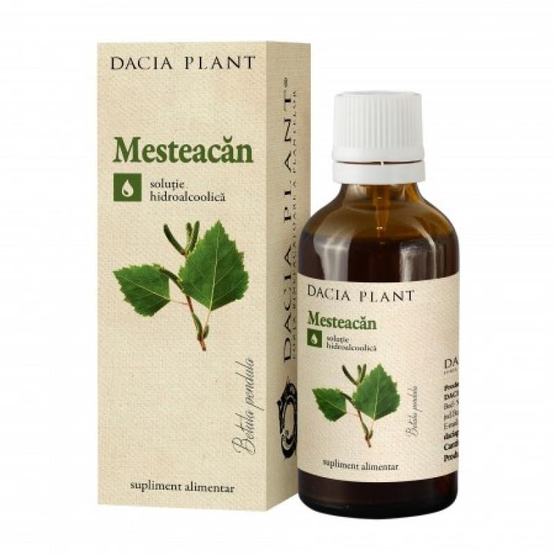 Mesteacan tinctura (50 ml), Dacia Plant