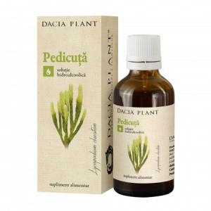 Pedicuta tinctura (50 ml), Dacia Plant