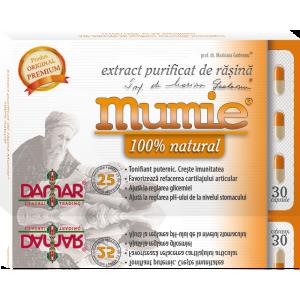 Extract purificat de rasina Mumie (30 capsule), Damar