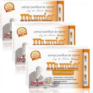 Pachet 3 x Extract purificat de mumie ( 60 capsule), Damar