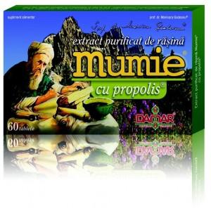 Mumie cu ginseng (60 tablete), Damar