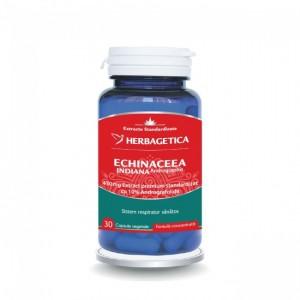 Echinaceea indiana (30 capsule), Herbagetica