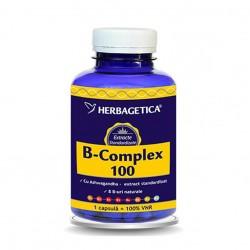 B Complex 100 (120 capsule), Herbagetica