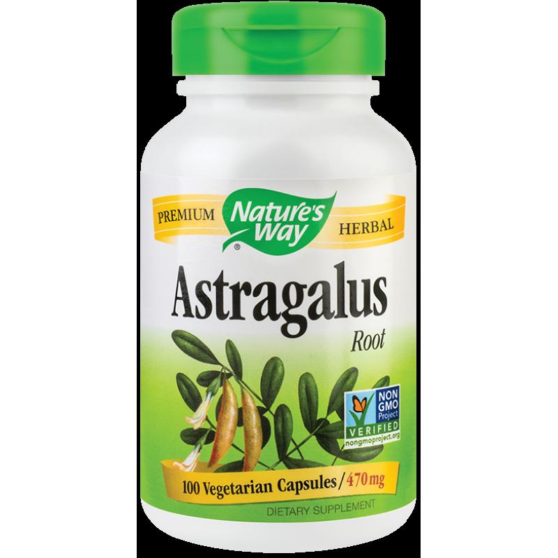 Astragalus (100 capsule), Nature's Way