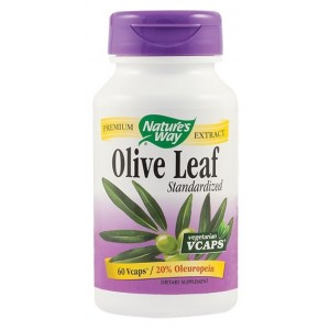 Olive Leaf 500mg (60 capsule), Nature's Way