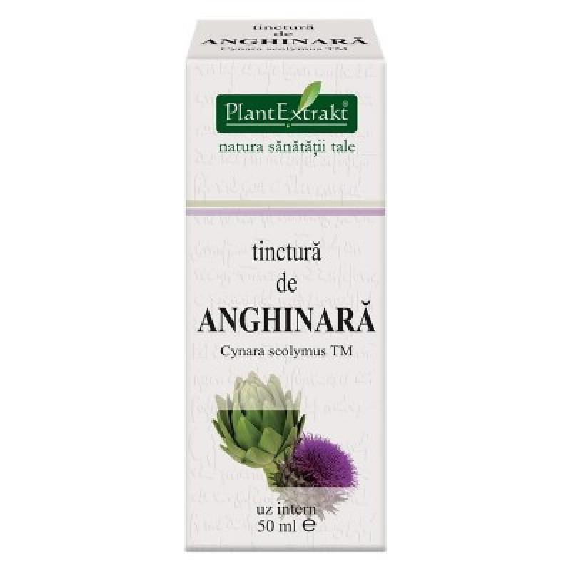 Tinctura de ANGHINARA - Cynara scolymus TM (50 ml)