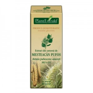 Extract din amenti de MESTEACAN PUFOS Betula pubescens MG=D1 (50 ml)