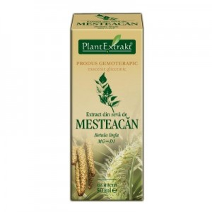 Extract din SEVA DE MESTEACAN - Betula linfa MG=D1 (50 ml)
