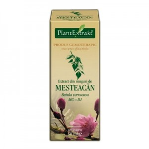 Extract din muguri de MESTEACAN - Betula verrucosa MG=D1 (50 ml)