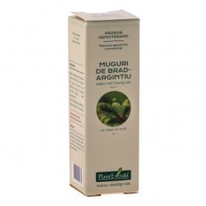 Macerat glicerinic concentrat din muguri de BRAD Abies pectinata (15 ml)