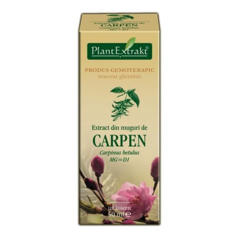 Extract din muguri de CARPEN - Carpinus betulus MG=D1 (50 ml)