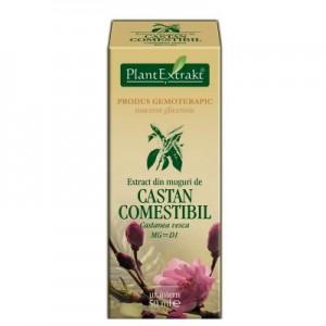 Extract din muguri de CASTAN COMESTIBIL Castanea vesca MG=D1 (50 ml)