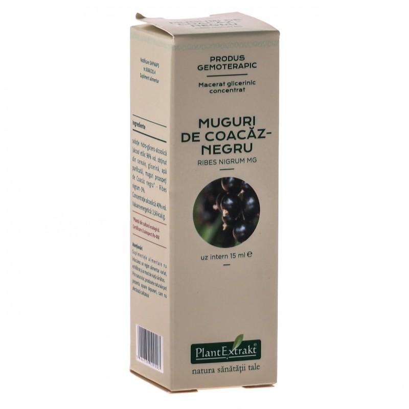 Macerat glicerinic concentrat din muguri de COACAZ NEGRU Ribes (15ml)