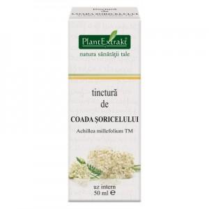 Tinctura de COADA SORICELULUI - Achillea millefolium TM (50 ml)