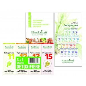 Pachet Promotional Detoxifiere 3+1 GRATUIT (Polygemma 11,12,13,15), Plantextrakt