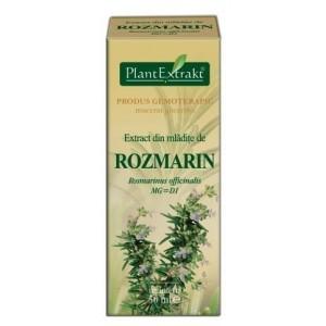Extract din mladite de ROZMARIN Rosmarinus officinalis (50 ml)