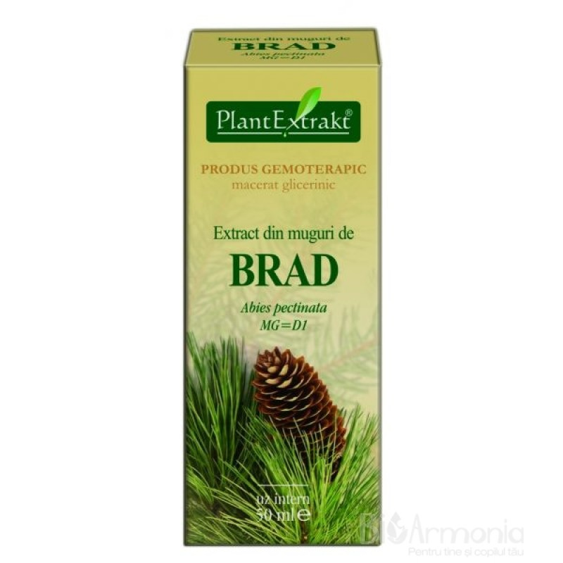 Extract din muguri de BRAD - Abies pectinata (50 ml)
