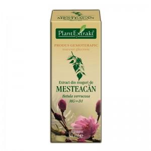 Extract din muguri de MESTEACAN PUFOS - Betula pubescens (50 ml)