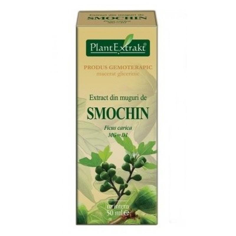 Extract din muguri de SMOCHIN - Ficus carica (50 ml)