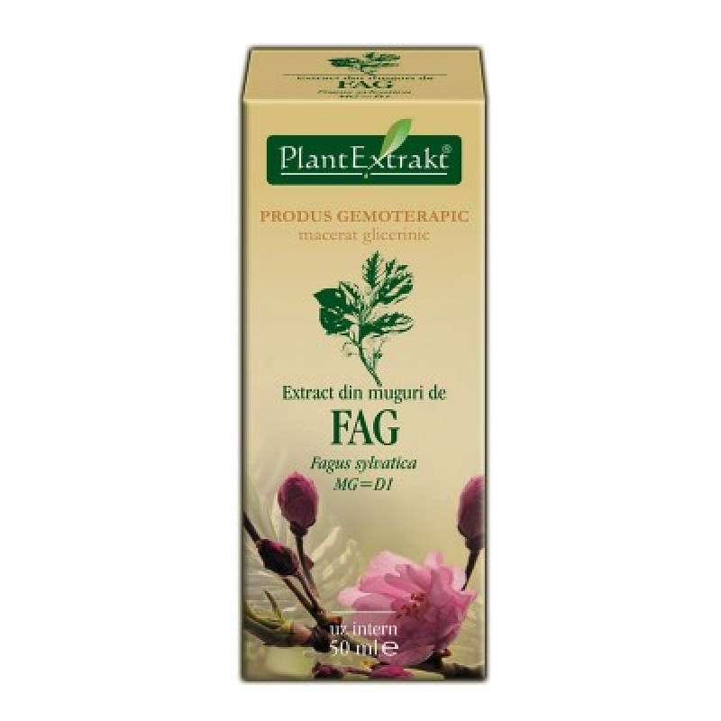 Extract din muguri de FAG - Fagus sylvatica MG=D1 (50 ml)