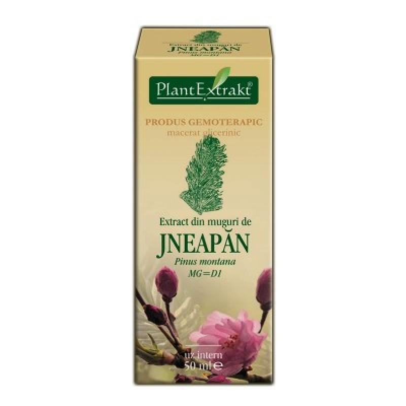 Extract din muguri de JNEAPAN - Pinus montana MG=D1 (50 ml)