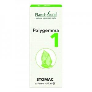 Polygemma 1 - Stomac (50 ml)