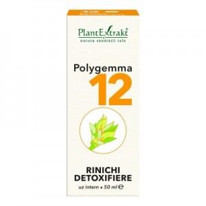 Polygemma 12 -  Rinichi, detoxifiere (50 ml)