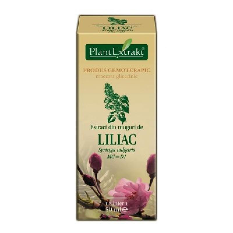 Extract din muguri de LILIAC - Syringa vulgaris MG=D1 (50 ml)