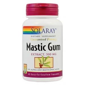 Mastic Gum (45 capsule), Solaray