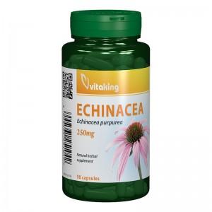 Extract de echinacea 250 mg (90 capsule), Vitaking
